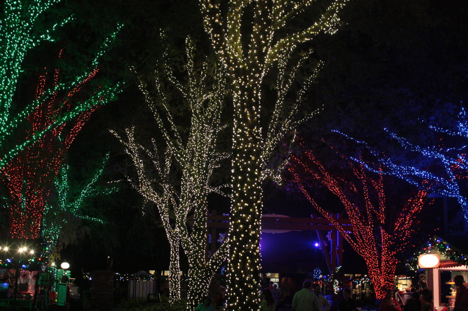 Christmas town at busch gardens delivers - Busch gardens tampa christmas town ...