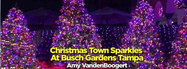 Busch Gardens Christmas Town Tampa.Micechat Busch Gardens Tampa Destinations Features