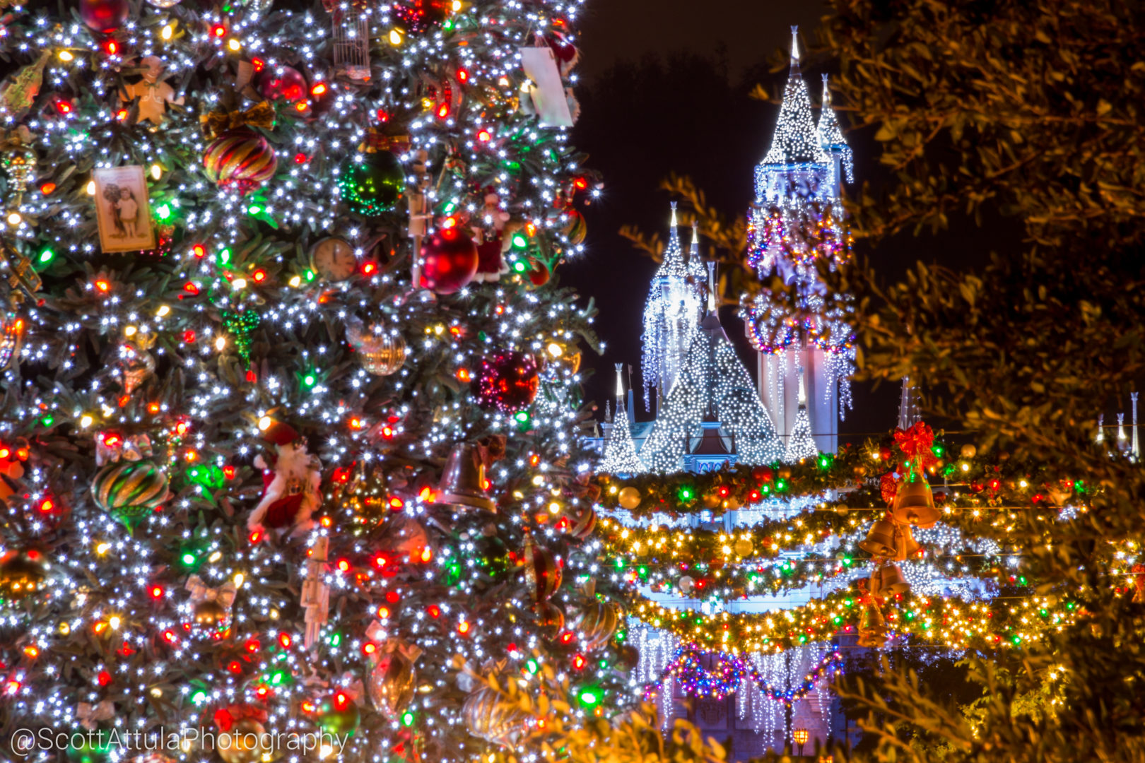 When Does Disneyland Decorate For Christmas.Micechat Disneyland Resort Features Disneyland Update